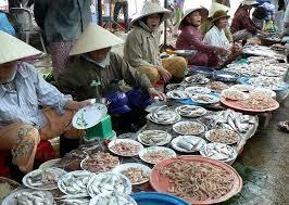 ベトナム魚市場.png